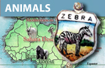 Animals & Zoos Shield Charms